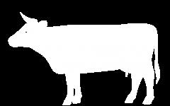 cow-w