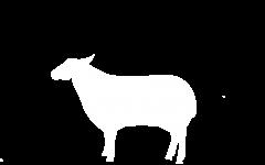 lamb-w
